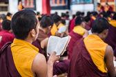 Monniken studeren — Stockfoto