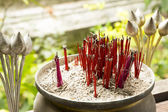 Incense stick and lotus — Stock Photo