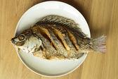 Alevins de tilapia du Nil ou Oreochromis niloticus sur plat — Photo
