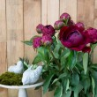 Still life of red peony flowers on wooden background — Stock Photo #76427205