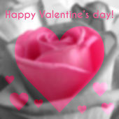 Happy Valentines Day Text on Blurred Background with rose Flower — Stock Vector