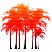 Silhouettes of palm trees — Stock Vector