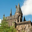 Постер, плакат: The Wizarding World of Harry Potter