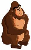 Gorila — Stock vektor