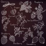 Berries set — Stock Vector #52944581