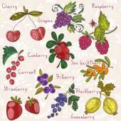 Berries set — Stock Vector