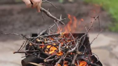 Firewood for grill 1080p — Stock Video