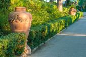 Terracotta vases — Photo