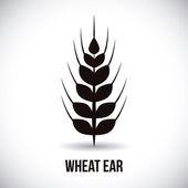 Wheat ear  — Stock Vector