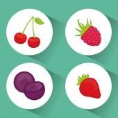 Fruits digital design. — Stock Vector