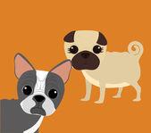 Pets Vector — Stock Vector