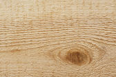 Wood close-up. Cut a tree trunk — Foto de Stock