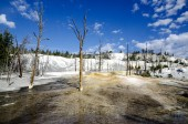 Mammoth Hot Springs in Yellowstone — Stock Photo
