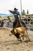 Rodeo competition — Stock Photo