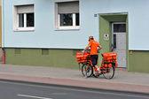 Postman. — Stockfoto