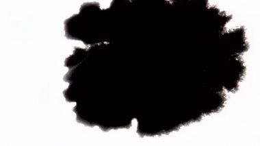 Drop black ink blot blob looped — Stock Video