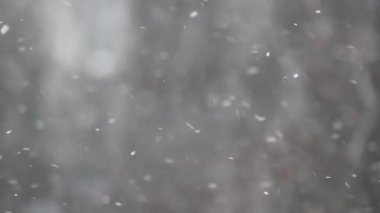 Snow is falling fast abstract background winter weather — Stockvideo