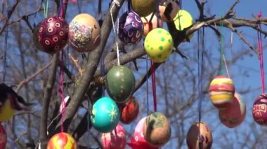Festive background painted Easter eggs branches tree — Stock Video
