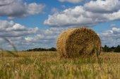 Palha de agricultura reuniram-se em um céu de colheita de campo de feixe — Fotografia Stock
