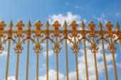 Oro cerca en frente del palacio de versalles en francia — Foto de Stock