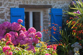 Detail of a picturesque cottage in Brittany, France — Foto Stock