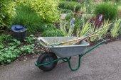 Wheelbarrow with other garden tools in a garden — Stock Photo