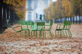 Old chairs in the autumnal park Tuileries in Paris, France — Stock Photo