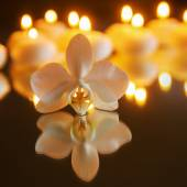 Orchid flower and tea lights — Stock Photo