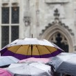 Umbrellas of a crowd of tourists while it is heavy raining — Stock Photo #54761649