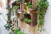 Picturesque flower shop in the old town of Verona, Italy — Stock Photo