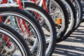 Bicycle wheels in a row — Stock Photo