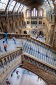 Natural History Museum in South Kensington in London, UK — Stock Photo