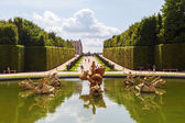 Fountain in the gardens of the Palace of Versailles in Versailles, France — Foto de Stock