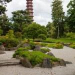 Royal Botanical Garden in Kew, England. — Stock Photo #55990215