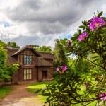 Royal Botanical Garden in Kew, England. — Stock Photo #56004269