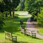 Royal Botanical Garden in Kew, England. — Stock Photo #56016693