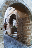 Archway in the medieval mountain village Groznjan in Croatia — Stock Photo