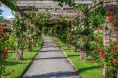 Royal Botanical Garden in Kew, England — Stock Photo