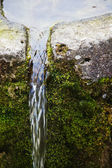 Water pouring out of an old moss covered stone trough — Stock Photo