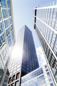 Skyscrapers in a low angle view — Stock Photo