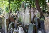 Antique tombstones on Old Jewish Cemetery in the Jewish Quarter in Prague, Czechia — Foto Stock