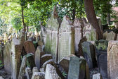 Antique tombstones on Old Jewish Cemetery in the Jewish Quarter in Prague, Czechia — Stock Photo