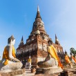 Buddha sculptures in the Buddhist Temple Wat Yai Chai Mongkon in the historical city Ayutthaya, Thailand — Stock Photo #62824975