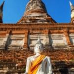 Buddha sculptures in the Buddhist Temple Wat Yai Chai Mongkon in the historical city Ayutthaya, Thailand — Stock Photo #62830943