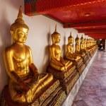 Golden Buddha statues at Wat Pho tempel in Bangkok, Thailand — Stock Photo #62964773