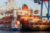 Container shipment in the Port of Hamburg, Germany — Stock Photo