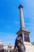 Nelsons Column at the Trafalgar Square in London, UK — Foto Stock