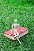 Wood model close vintage book in green park — Stock Photo