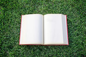 Clock up open blank book on the grass field  — Stock Photo