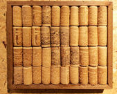 Closeup many different wine corks in wood frame collection on co — Stock Photo